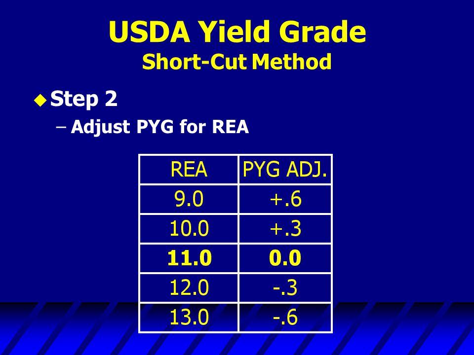 USDA Yield Grade Short-Cut Method u Step 2 –Adjust PYG for REA