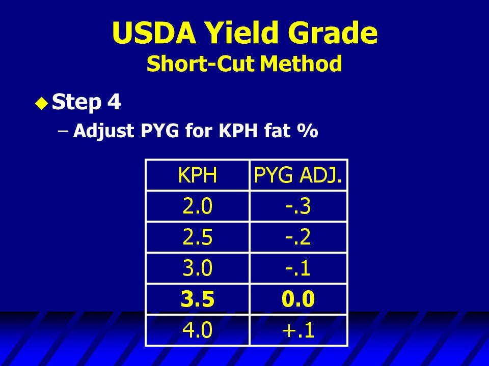 USDA Yield Grade Short-Cut Method u Step 4 –Adjust PYG for KPH fat %