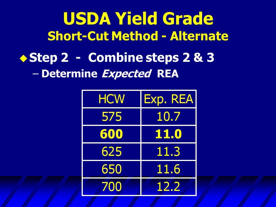 USDA Yield Grade Short-Cut Method - Alternate u Step 2 - Combine steps 2 & 3 –Determine Expected REA