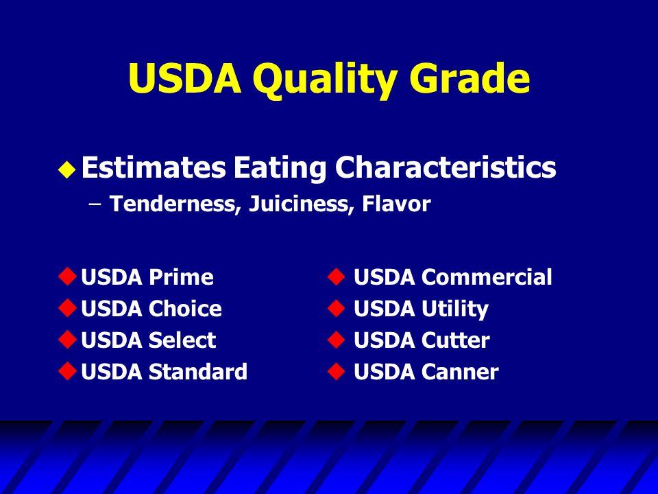 USDA Quality Grade u Estimates Eating Characteristics –Tenderness, Juiciness, Flavor u USDA Prime  USDA Commercial u USDA Choice  USDA Utility u USDA Select  USDA Cutter u USDA Standard  USDA Canner