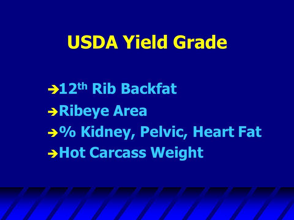 USDA Yield Grade  12 th Rib Backfat è Ribeye Area è % Kidney, Pelvic, Heart Fat è Hot Carcass Weight