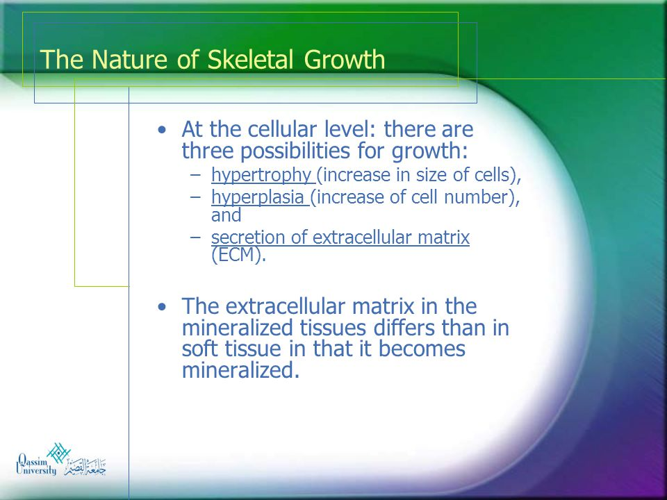 The Nature of Skeletal Growth Mohammad Almohaimeed BDS, SSC(Ortho)