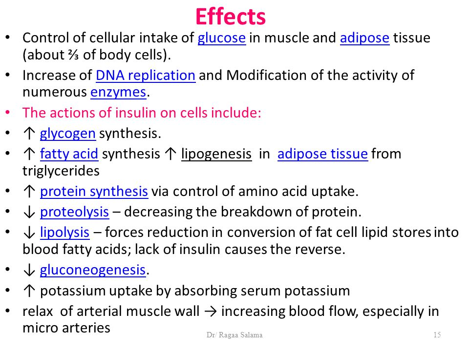 Dr/ Ragaa Salama15 Effects Control of cellular intake of glucose in muscle and adipose tissue (about ⅔ of body cells).glucoseadipose Increase of DNA replication and Modification of the activity of numerous enzymes.DNA replicationenzymes The actions of insulin on cells include: ↑ glycogen synthesis.glycogen ↑ fatty acid synthesis ↑ lipogenesis in adipose tissue from triglyceridesfatty acidadipose tissue ↑ protein synthesis via control of amino acid uptake.protein synthesis ↓ proteolysis – decreasing the breakdown of protein.proteolysis ↓ lipolysis – forces reduction in conversion of fat cell lipid stores into blood fatty acids; lack of insulin causes the reverse.lipolysis ↓ gluconeogenesis.gluconeogenesis ↑ potassium uptake by absorbing serum potassium relax of arterial muscle wall → increasing blood flow, especially in micro arteries
