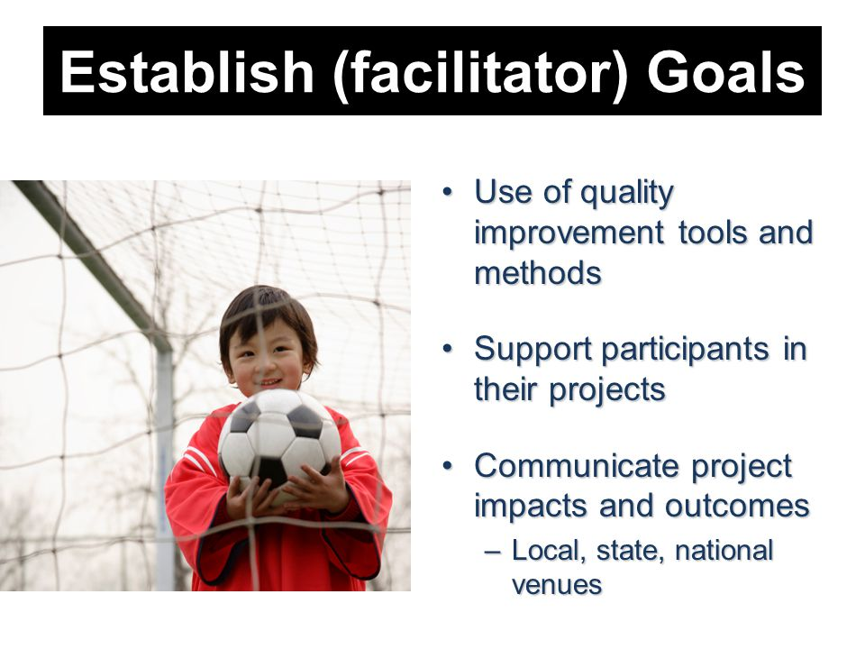 Establish (facilitator) Goals Use of quality improvement tools and methodsUse of quality improvement tools and methods Support participants in their projectsSupport participants in their projects Communicate project impacts and outcomesCommunicate project impacts and outcomes –Local, state, national venues