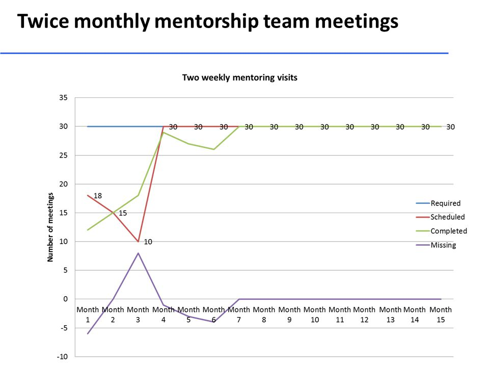 Twice monthly mentorship team meetings