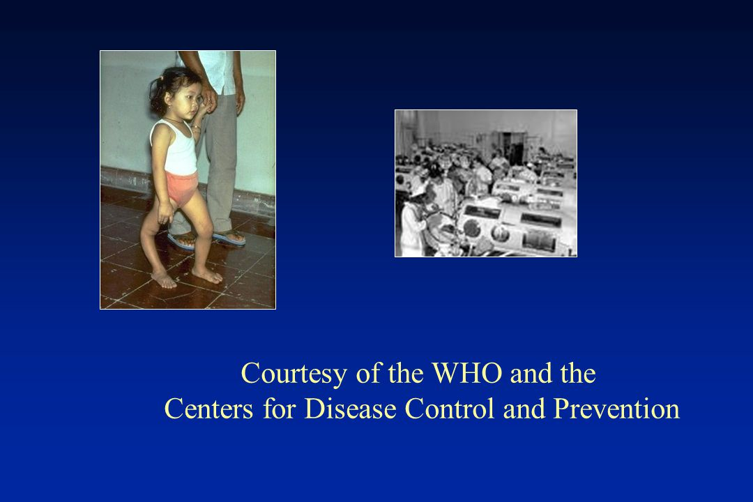 Courtesy of the WHO and the Centers for Disease Control and Prevention