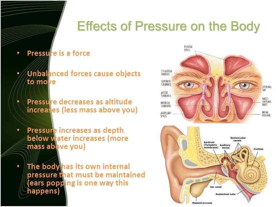 Effects of Pressure on the Body Pressure is a force Unbalanced forces cause objects to move Pressure decreases as altitude increases (less mass above you) Pressure increases as depth below water increases (more mass above you) The body has its own internal pressure that must be maintained (ears popping is one way this happens)