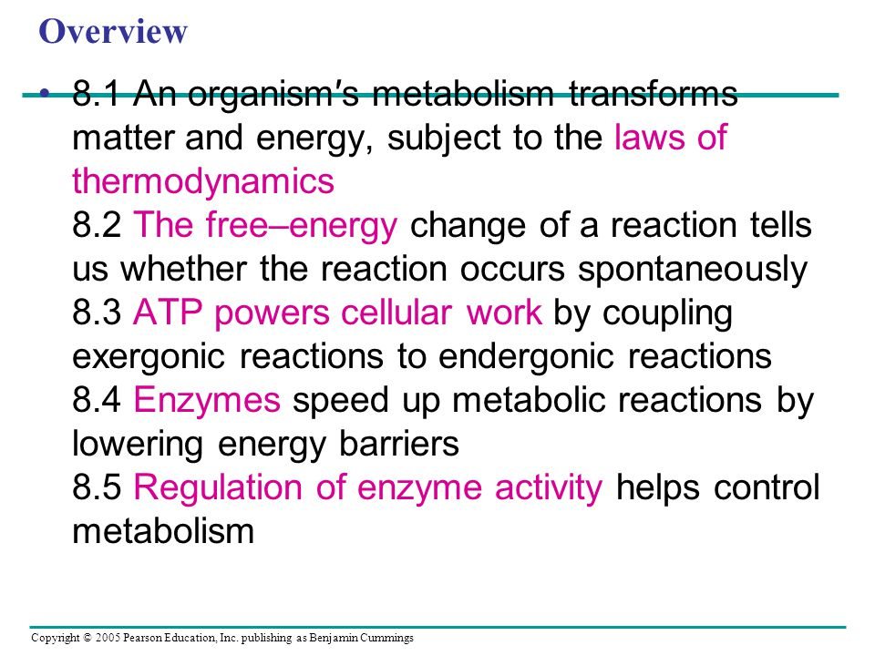 Copyright © 2005 Pearson Education, Inc. publishing as Benjamin Cummings Overview 8.1 An organism′s metabolism transforms matter and energy, subject t