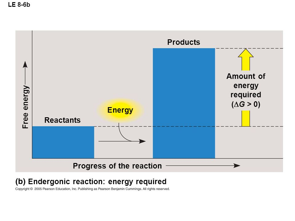 LE 8-6b Reactants Energy Products Progress of the reaction Amount of energy required (  G > 0) Free energy Endergonic reaction: energy required