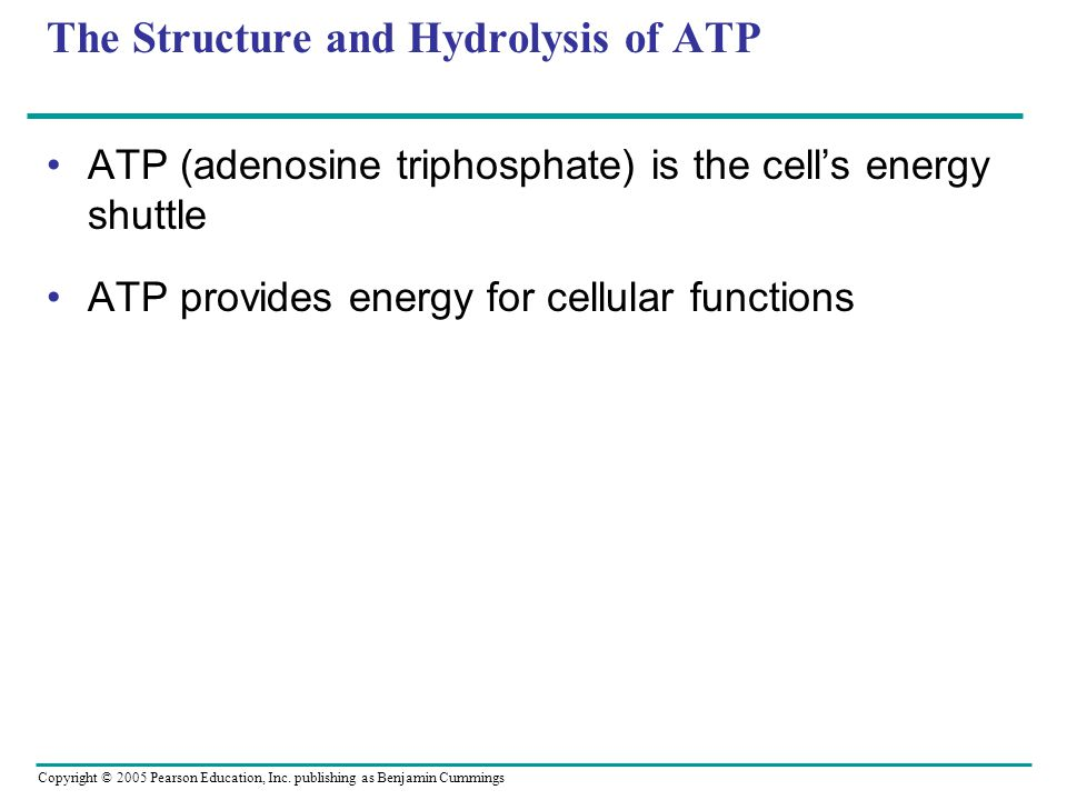 Copyright © 2005 Pearson Education, Inc. publishing as Benjamin Cummings The Structure and Hydrolysis of ATP ATP (adenosine triphosphate) is the cell'