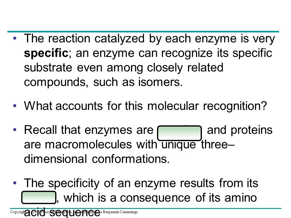 Copyright © 2005 Pearson Education, Inc. publishing as Benjamin Cummings The reaction catalyzed by each enzyme is very specific; an enzyme can recogni