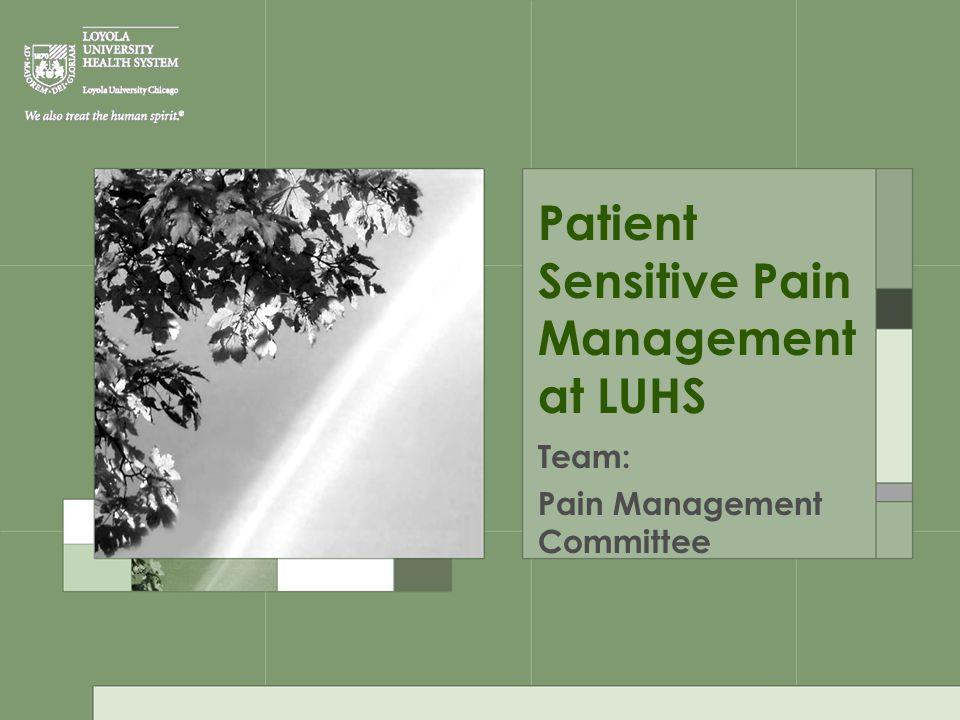 Patient Sensitive Pain Management at LUHS Team: Pain Management Committee