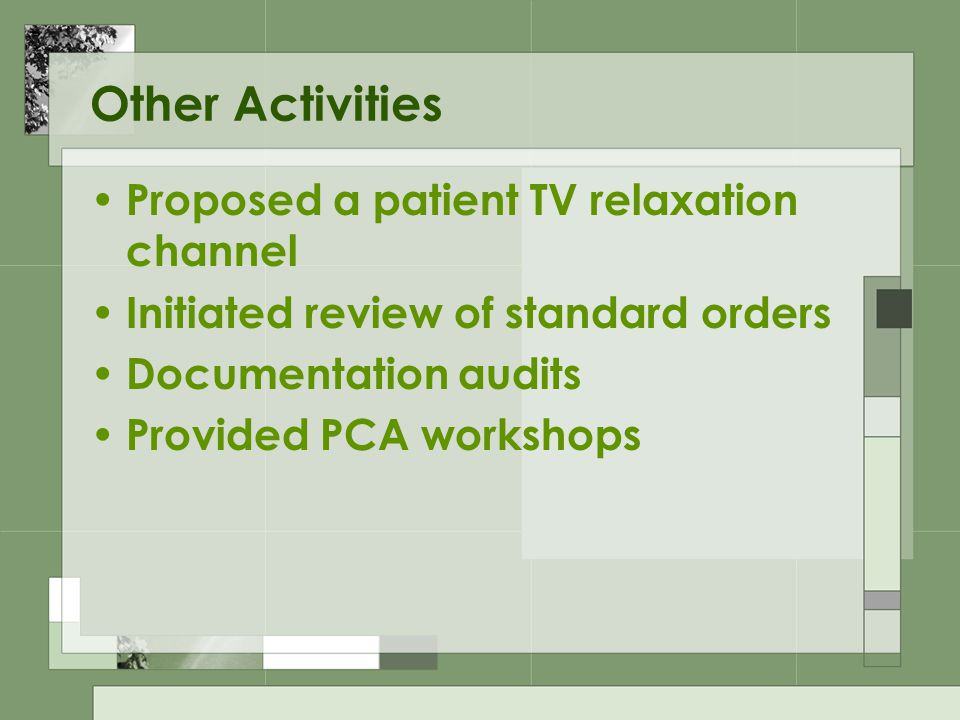 Other Activities Proposed a patient TV relaxation channel Initiated review of standard orders Documentation audits Provided PCA workshops