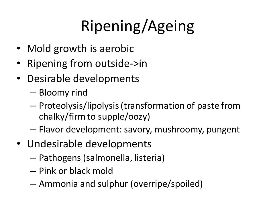Ripening/Ageing Mold growth is aerobic Ripening from outside->in Desirable developments – Bloomy rind – Proteolysis/lipolysis (transformation of paste from chalky/firm to supple/oozy) – Flavor development: savory, mushroomy, pungent Undesirable developments – Pathogens (salmonella, listeria) – Pink or black mold – Ammonia and sulphur (overripe/spoiled)