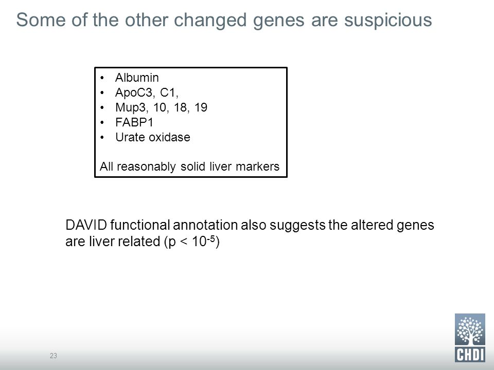 Some of the other changed genes are suspicious 23 Albumin ApoC3, C1, Mup3, 10, 18, 19 FABP1 Urate oxidase All reasonably solid liver markers DAVID functional annotation also suggests the altered genes are liver related (p < 10 -5 )