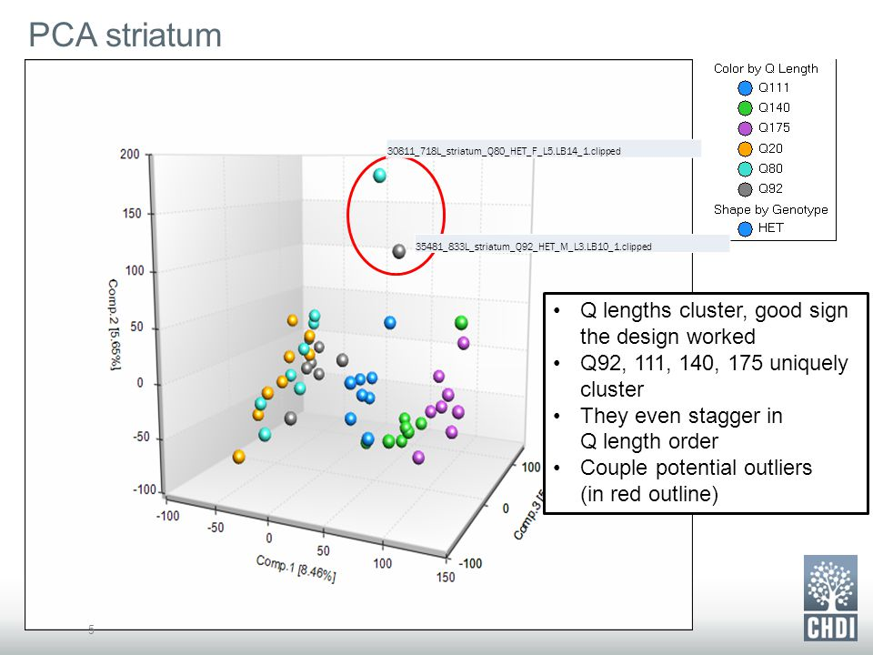 PCA striatum 5 Q lengths cluster, good sign the design worked Q92, 111, 140, 175 uniquely cluster They even stagger in Q length order Couple potential outliers (in red outline) 30811_718L_striatum_Q80_HET_F_L5.LB14_1.clipped 35481_833L_striatum_Q92_HET_M_L3.LB10_1.clipped