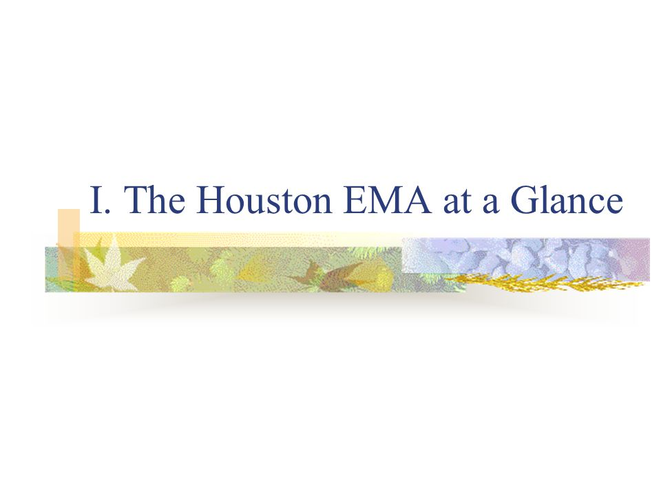 I. The Houston EMA at a Glance