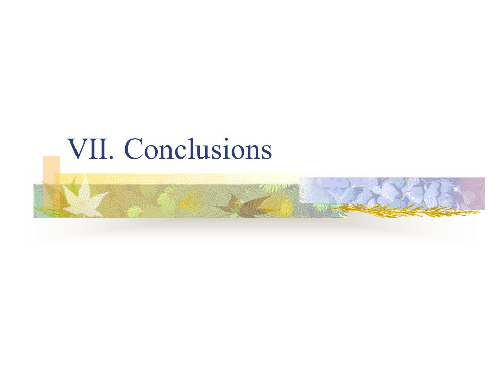 VII. Conclusions