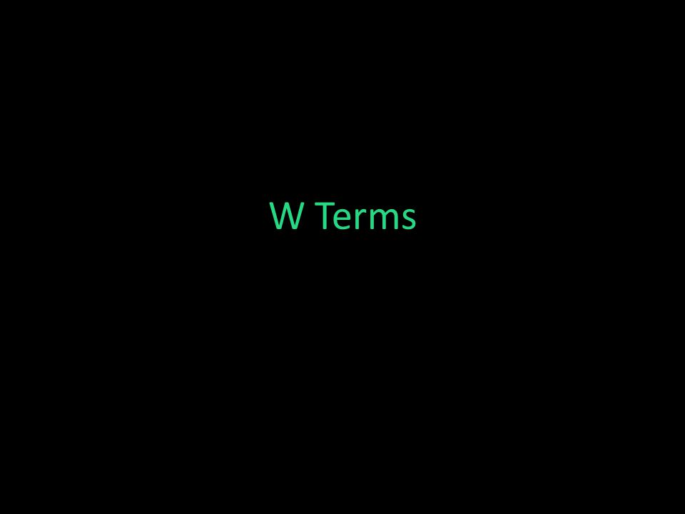 W Terms