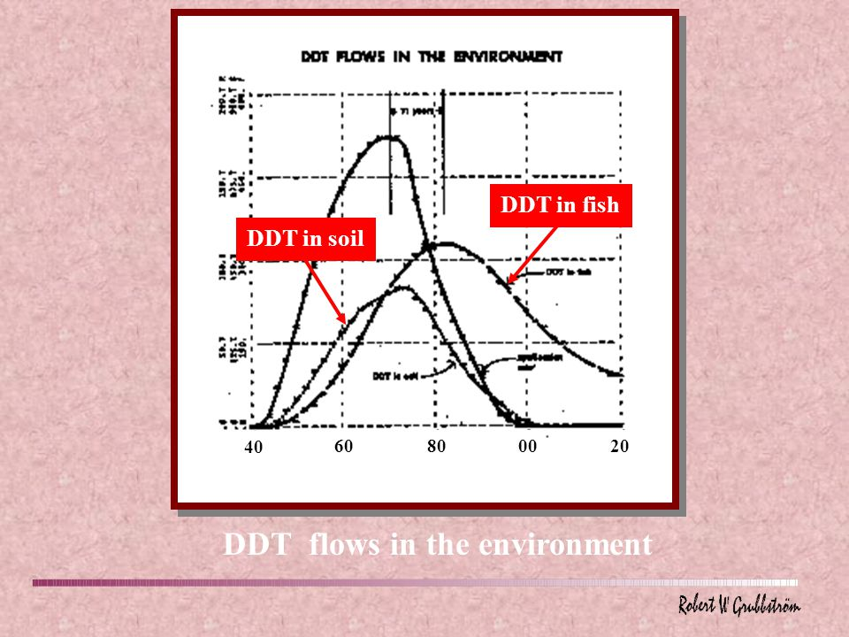 DDT flows in the environment 40 60800020 DDT in soilDDT in fish