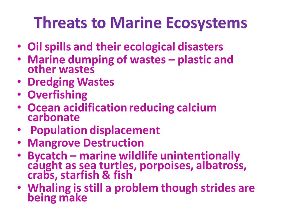 Threats to Marine Ecosystems Oil spills and their ecological disasters Marine dumping of wastes – plastic and other wastes Dredging Wastes Overfishing Ocean acidification reducing calcium carbonate Population displacement Mangrove Destruction Bycatch – marine wildlife unintentionally caught as sea turtles, porpoises, albatross, crabs, starfish & fish Whaling is still a problem though strides are being make