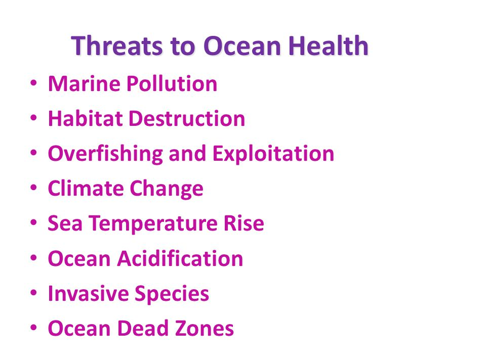 Threats to Ocean Health Marine Pollution Habitat Destruction Overfishing and Exploitation Climate Change Sea Temperature Rise Ocean Acidification Invasive Species Ocean Dead Zones