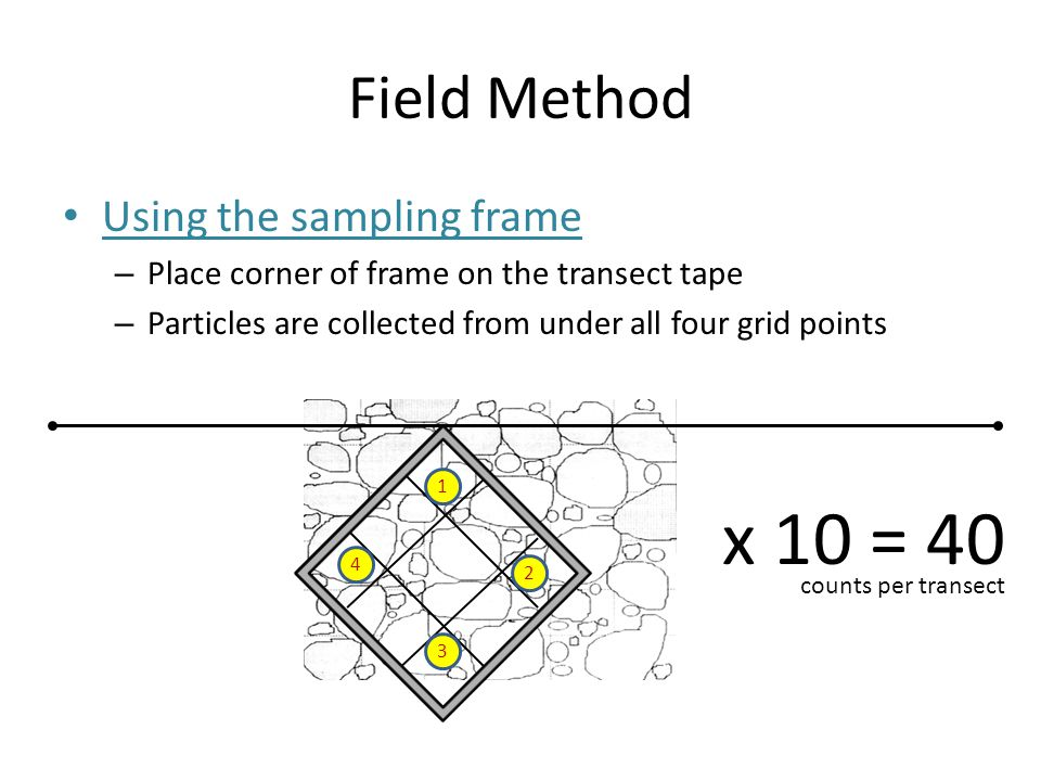 Field Method Using the sampling frame – Place corner of frame on the transect tape – Particles are collected from under all four grid points 1 2 3 4 x 10= 40 counts per transect