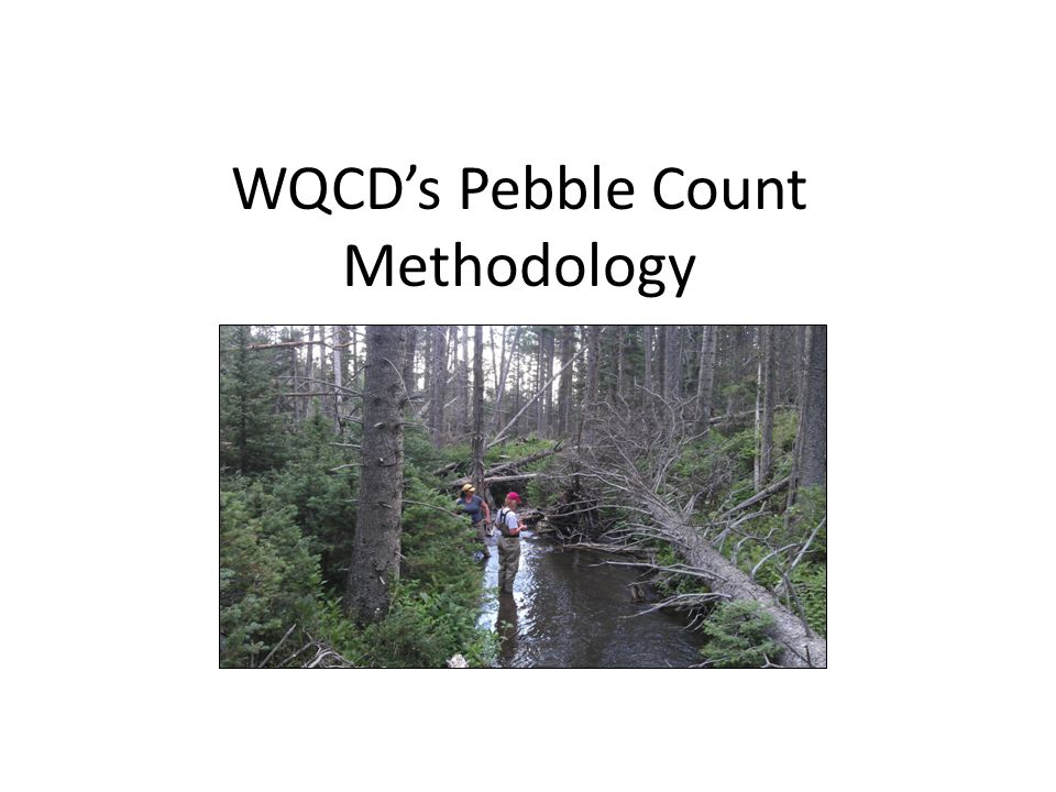 WQCD's Pebble Count Methodology