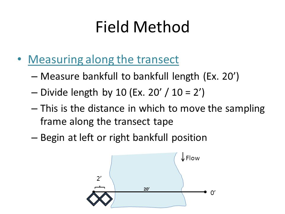 Field Method Measuring along the transect – Measure bankfull to bankfull length (Ex. 20') – Divide length by 10 (Ex. 20' / 10 = 2') – This is the dist
