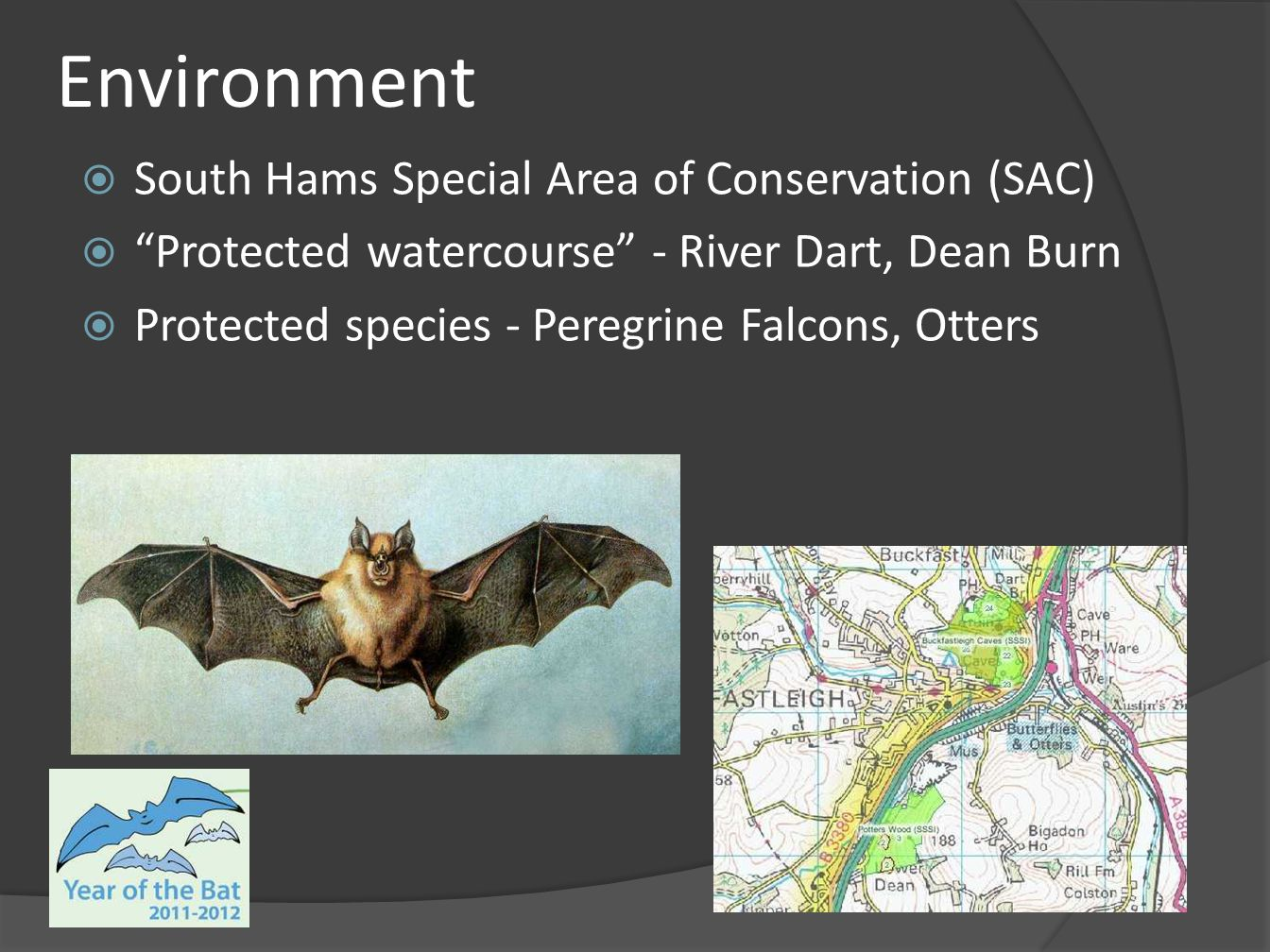 "Environment  South Hams Special Area of Conservation (SAC)  ""Protected watercourse"" - River Dart, Dean Burn  Protected species - Peregrine Falcons,"