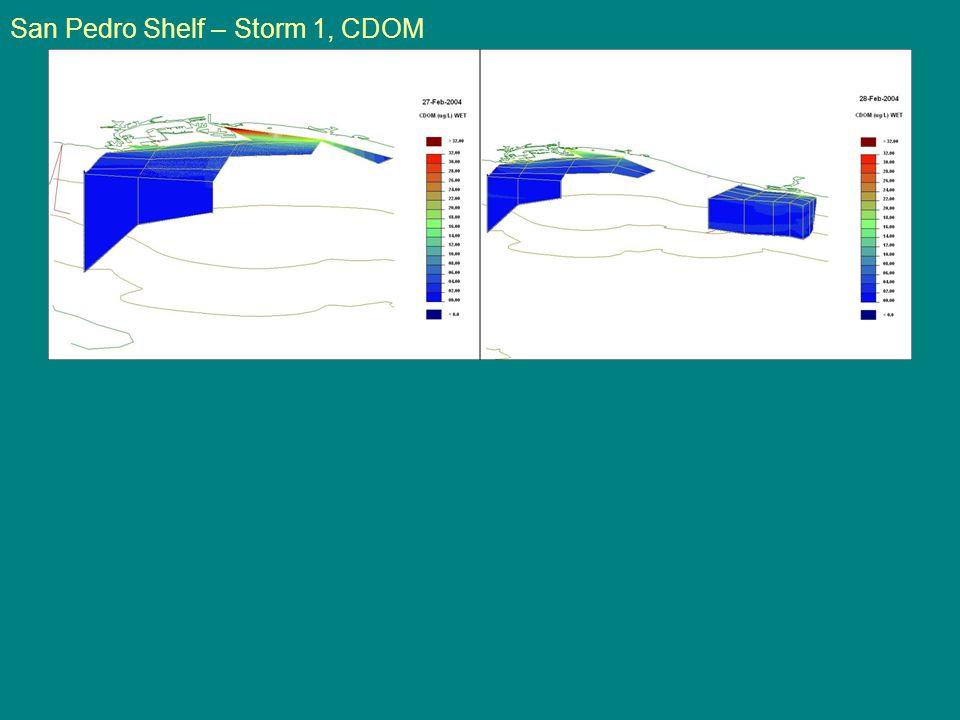 San Pedro Shelf – Storm 1, CDOM