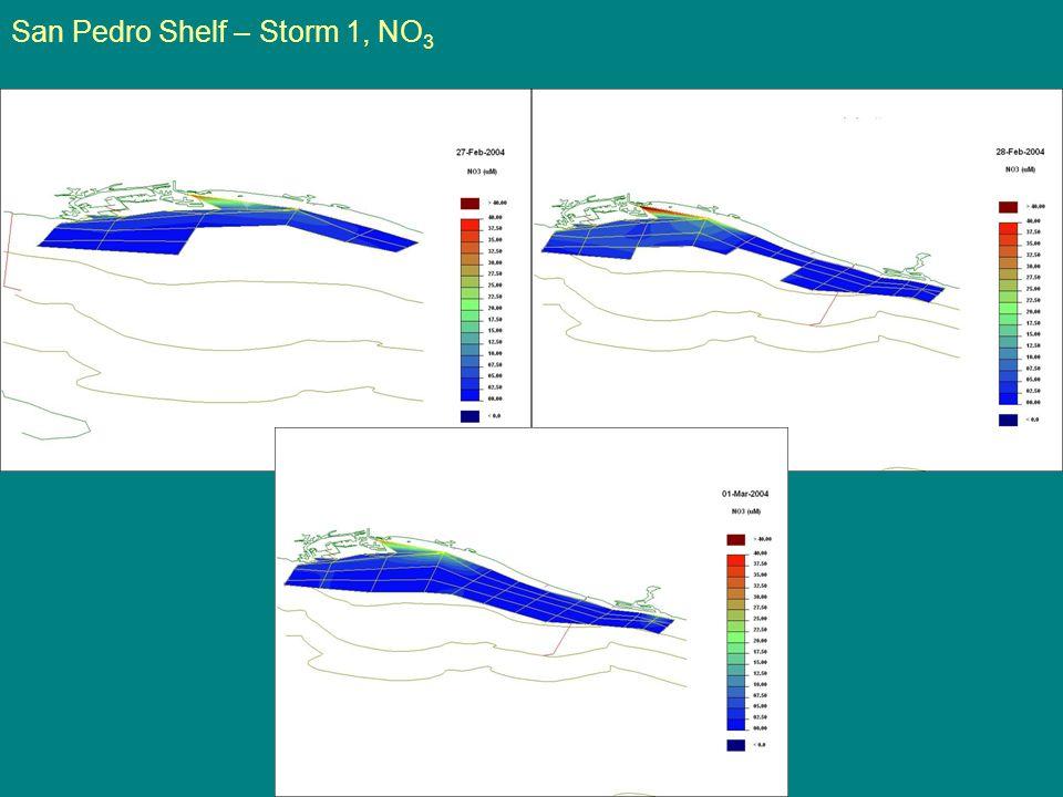 San Pedro Shelf – Storm 1, NO 3