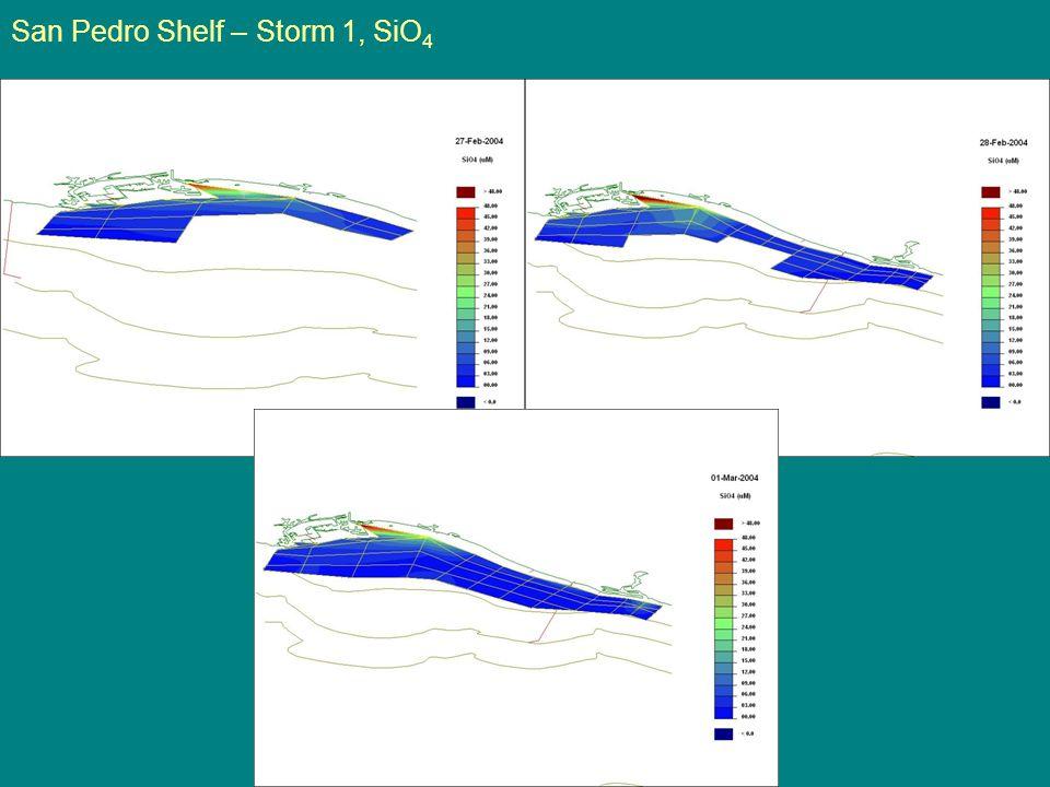 San Pedro Shelf – Storm 1, SiO 4