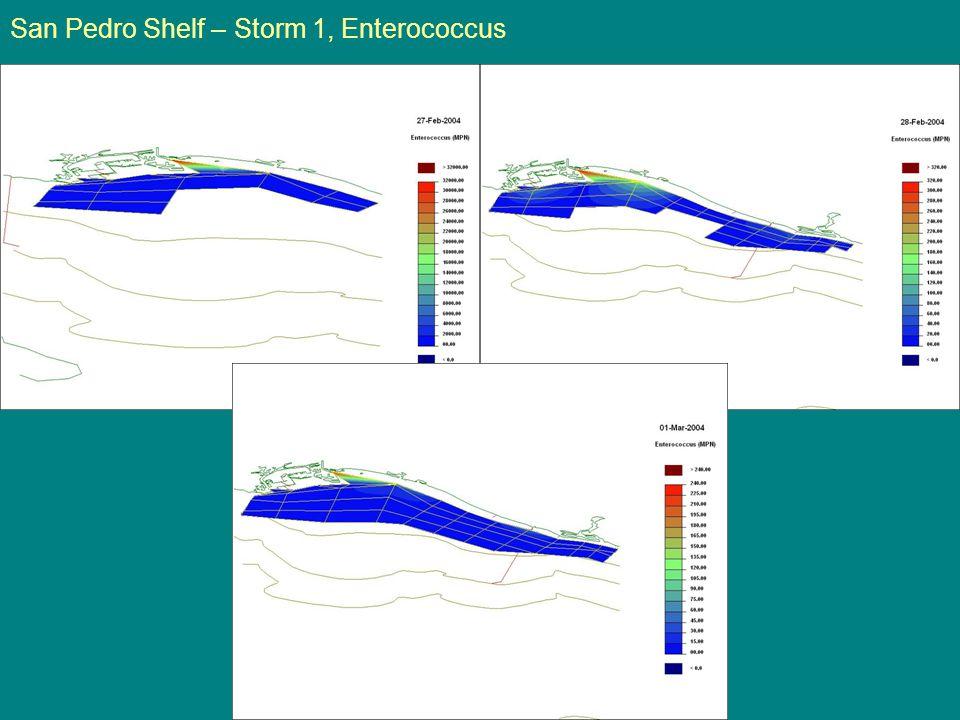 San Pedro Shelf – Storm 1, Enterococcus