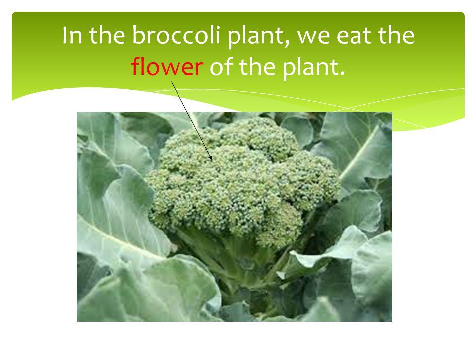 What do we eat in cauliflower?