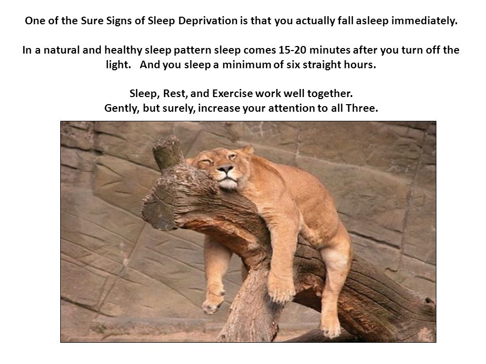 One of the Sure Signs of Sleep Deprivation is that you actually fall asleep immediately.