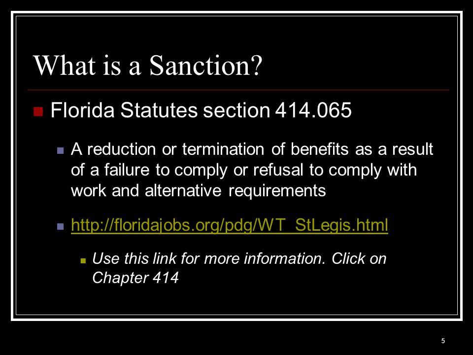 46 The Sanction Process –First Failure