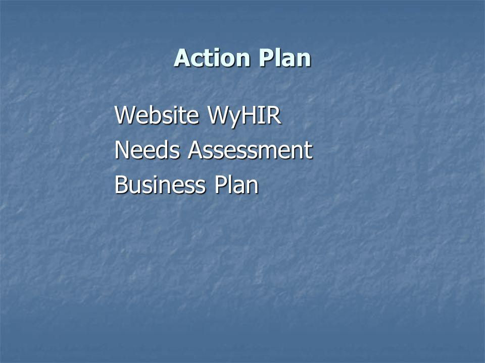 Action Plan Website WyHIR Needs Assessment Business Plan