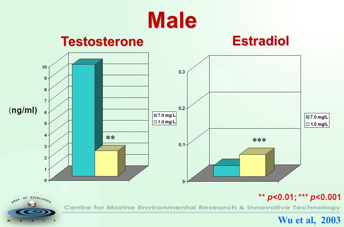 Male *** (ng/ml) ** p<0.01; *** p<0.001 Wu et al, 2003 Estradiol Testosterone **