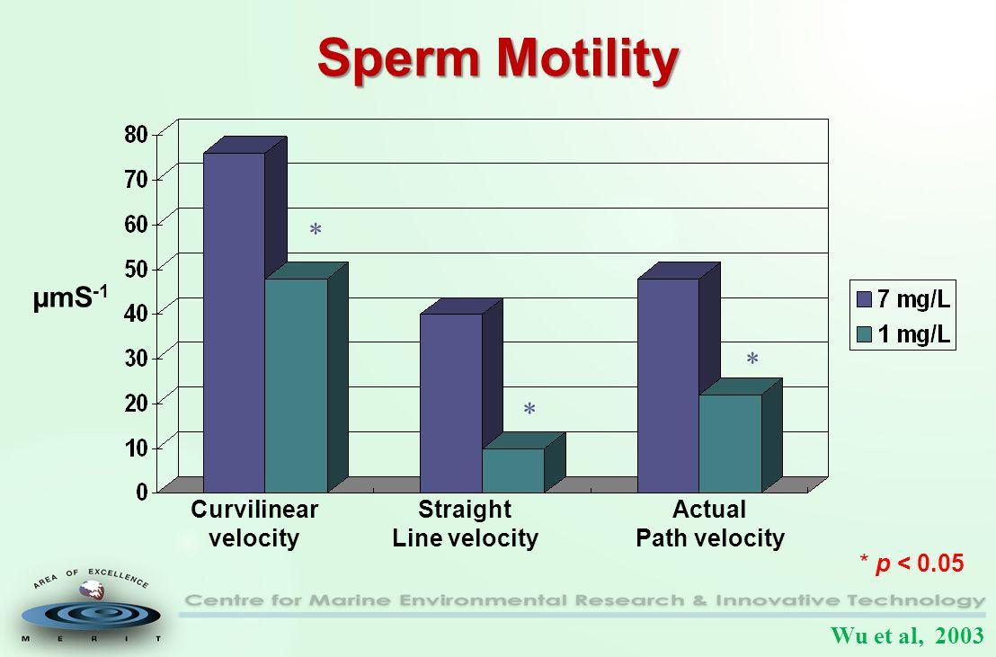 Sperm Motility Curvilinear velocity Straight Line velocity Actual Path velocity * * * * p < 0.05 µmS -1 Wu et al, 2003