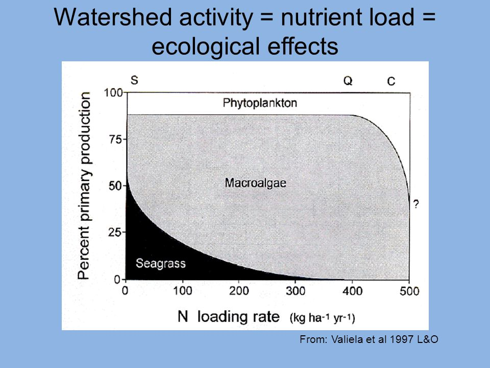 Watershed activity = nutrient load = ecological effects From: Valiela et al 1997 L&O