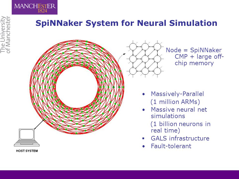 SpiNNaker System for Neural Simulation Massively-Parallel (1 million ARMs) Massive neural net simulations (1 billion neurons in real time)  GALS infrastructure Fault-tolerant Node = SpiNNaker CMP + large off- chip memory