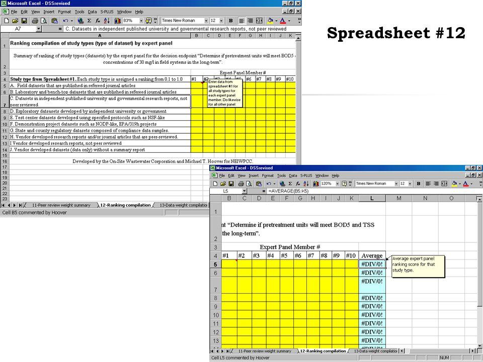46 Spreadsheet #12
