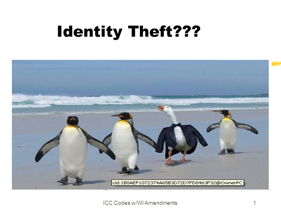 ICC Codes w/WI Amendments1 Identity Theft???