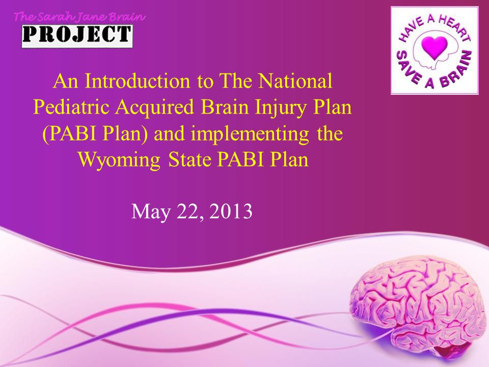 An Introduction to The National Pediatric Acquired Brain Injury Plan (PABI Plan) and implementing the Wyoming State PABI Plan May 22, 2013