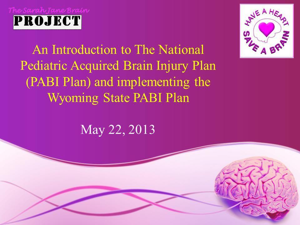 Participants and Agenda Participants: Patrick Donohue, Esq., Founder, The Sarah Jane Brain Foundation Dr.