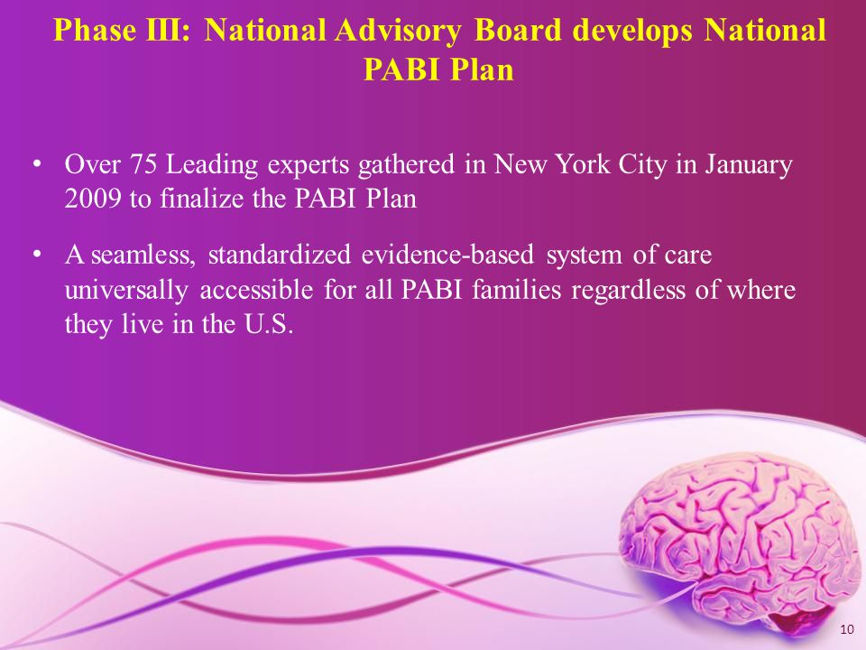 Phase III: National Advisory Board develops National PABI Plan Over 75 Leading experts gathered in New York City in January 2009 to finalize the PABI Plan A seamless, standardized evidence-based system of care universally accessible for all PABI families regardless of where they live in the U.S.
