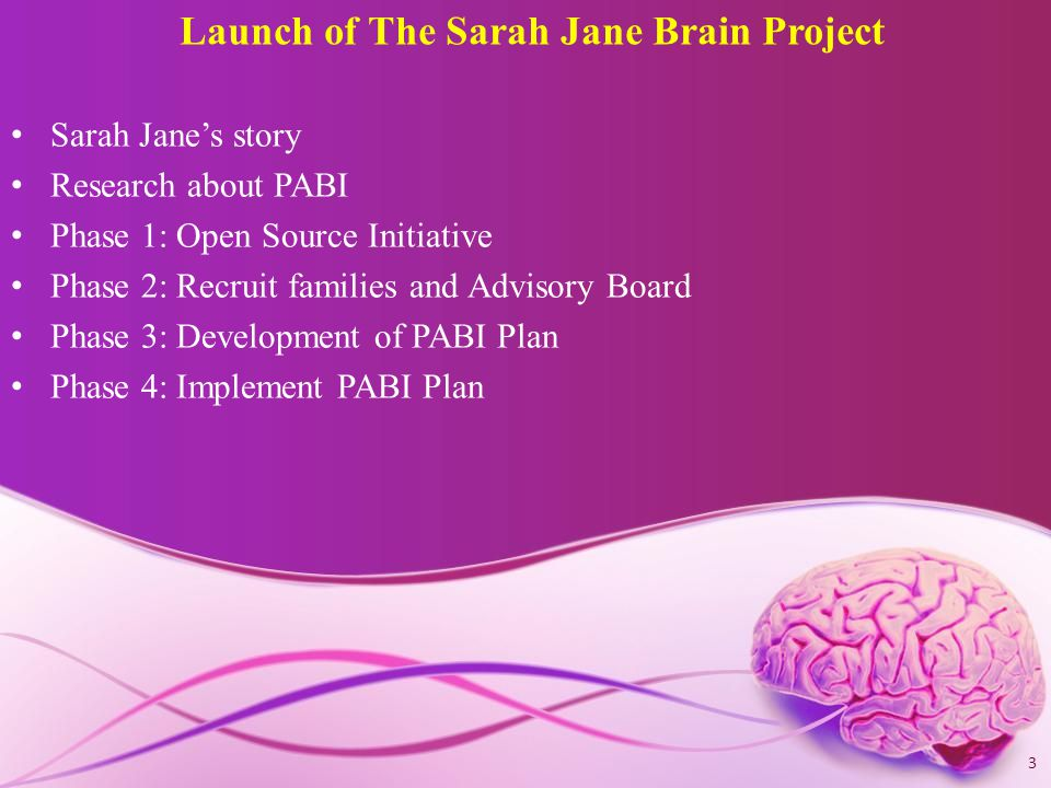 Launch of The Sarah Jane Brain Project Sarah Jane's story Research about PABI Phase 1: Open Source Initiative Phase 2: Recruit families and Advisory Board Phase 3: Development of PABI Plan Phase 4: Implement PABI Plan 3