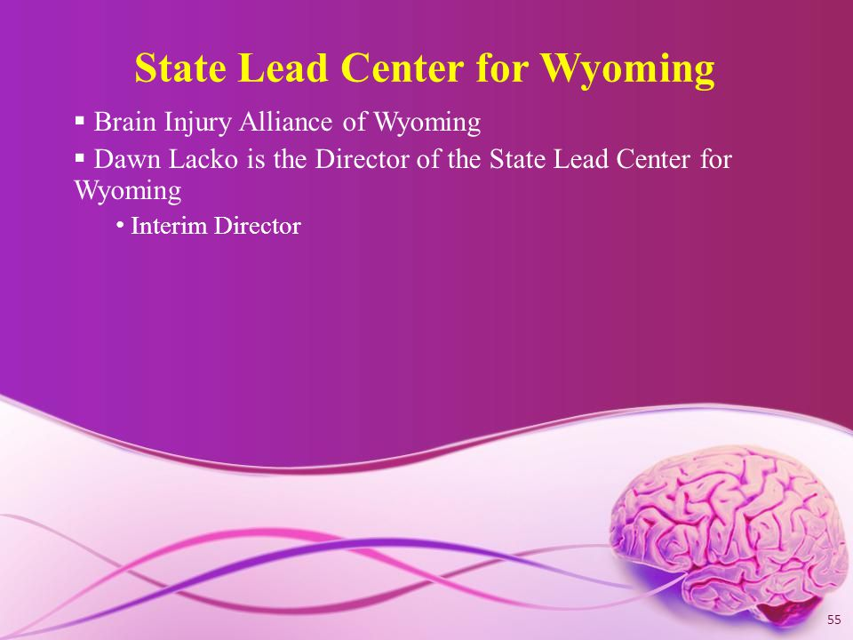 State Lead Center for Wyoming  Brain Injury Alliance of Wyoming  Dawn Lacko is the Director of the State Lead Center for Wyoming Interim Director 55