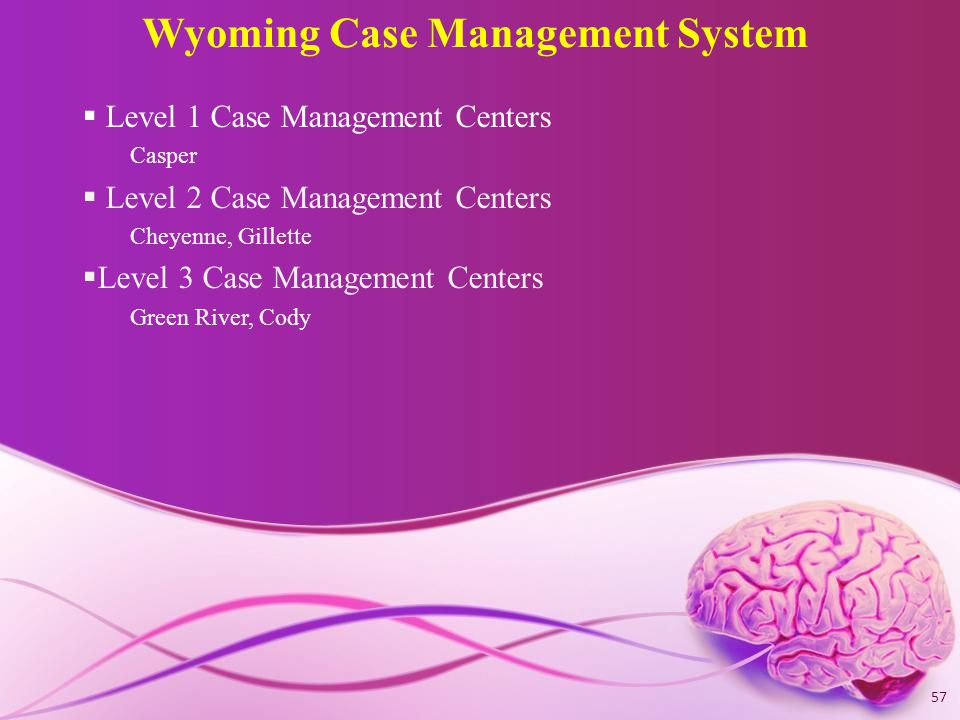 Wyoming Case Management System  Level 1 Case Management Centers Casper  Level 2 Case Management Centers Cheyenne, Gillette  Level 3 Case Management Centers Green River, Cody 57